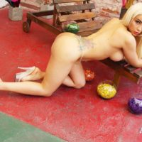 Tattooed blonde shemale Angeles Cid displaying large tits and legs in high heels
