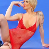 Tattooed blonde shemale Blondie Johnson letting huge cock free from red lingerie