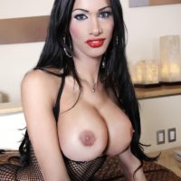 Beautiful brunette trans model with large breasts posing in sexy lingerie