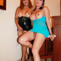 Busty brunette and redhead shemales expose big butts and upskirt shecocks