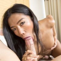 Hung Asian tranny Mos sucking on large dick before spreading for BB anal fucking