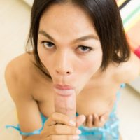 Brunette ladyboy Dear gives a blowjob before bareback anal sex in sexy lingerie