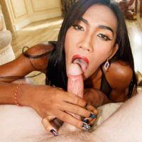 Slender ladyboy Nutty licks and tugs on a man's hard cock in sheer stockings