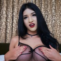Dark haired shemale with big tits holds her big dick in see thru lingerie and fishnets