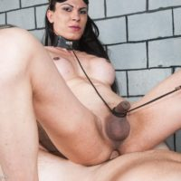 Brunette tranny Kamila Camargo gets ass fucked by her Master while bindfolded
