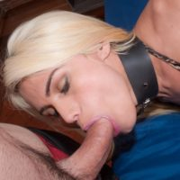 Latina tranny Nicoly Sache sucks a cock before anal sex while cuffed and collared