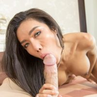 Beautiful ladyboy Mos licks and blows a large cock prior to bareback anal fucking