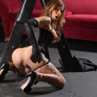Redheaded tranny Jasmine Jewels strokes her big cock in long black gloves and a corset
