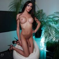 Shemale solo model Kimber Lee puts her round mamas & big cock on display